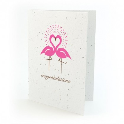 Botanical Paperworks 'Congratulations'  Plantable Paper Gift Card -Classic-All Occasion Cards (Pink)
