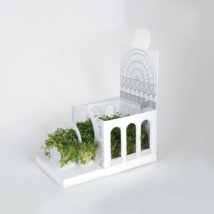 Another Studio - PostCarden Botanical