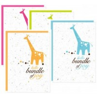 Botanical Paperworks- 'Hello Bundle of Joy' Plantable Paper Gift Cards (4 Colour Options) (Blue, Orange, Pink & Green)