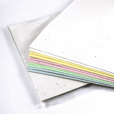 Botanical Paperworks - Multi-Color Seed Plantable Paper Package - 10 sheets - White/ Yellow/ Pink/ Mint/ Blue