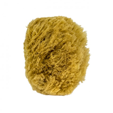 Urban Spa - The All-Natural Sea Sponges