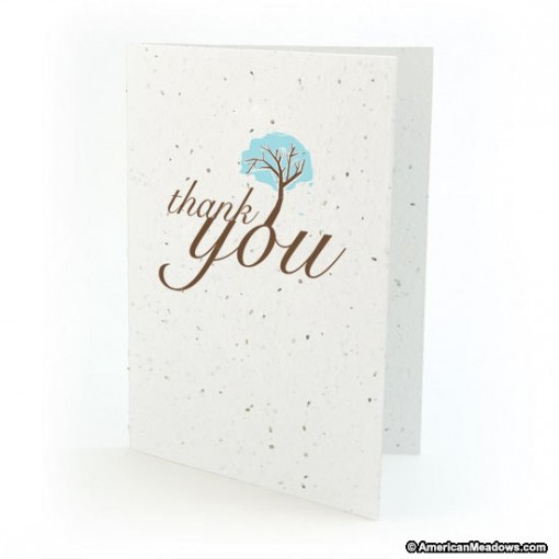 Botanical Paperworks 'Thank You' Plantable Paper Gift Card -Classic-All Occasion Cards (Aqua Blue)
