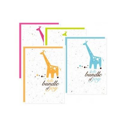 Botanical Paperworks- 'Hello Bundle of Joy' Plantable Paper Gift Cards (4 Colour Options) (Blue, Orange, Pink & Green)