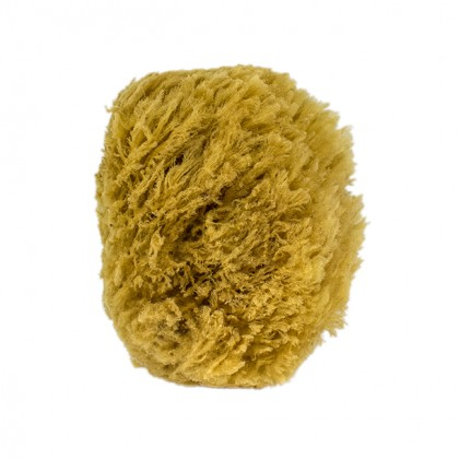 urban-spa-all-natural-sea-sponge